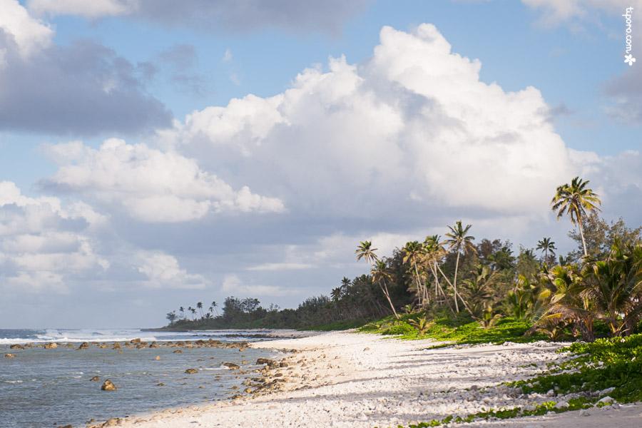 Matavera Coastline.