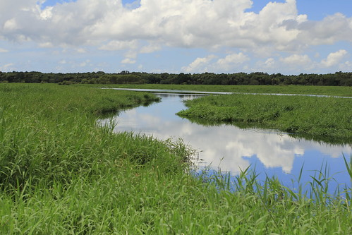 statepark sky reflection water clouds florida myakka birdwalk tributary canoneos60d