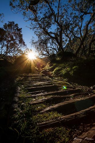 sunset nature canon eos soleil landscapes solitude rando tropical sentier paysages réunion mafate lanouvelle 5dii bemezpictures