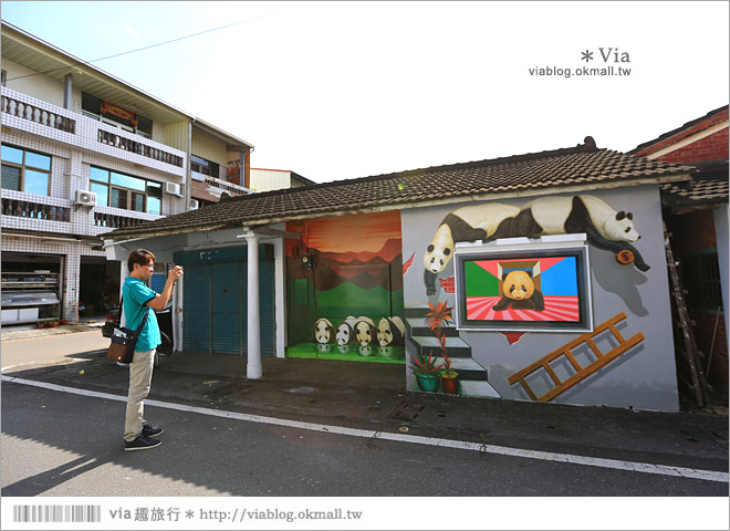 【雲林熊貓村】斗南鎮石龜熊貓村~最新!超萌又生動的立體3D畫彩繪村再一彈!30