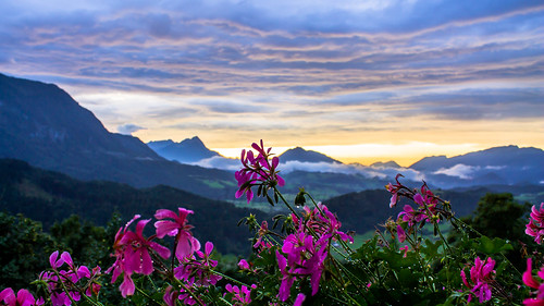 travel flowers sunset mountains water clouds hotel austria droplets am view spital phyrn