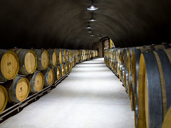 infrastructure(0.0), wood(1.0), winery(1.0), tunnel(1.0),