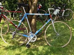 Opinion you falcon san remo vintage bicycle accept