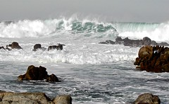 Asilomar surf, version 2