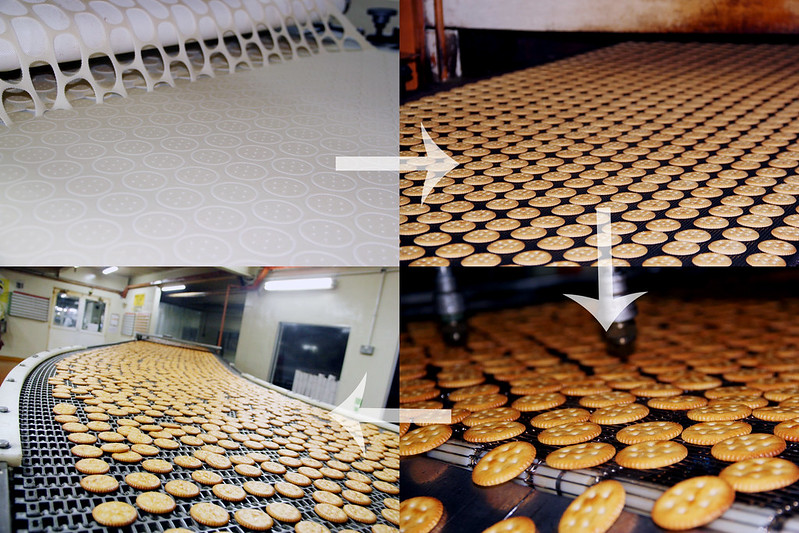 biscuits process