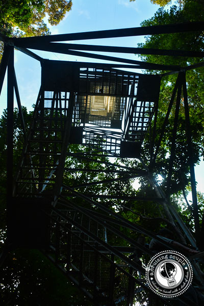 Tower in the Amazon Jungle