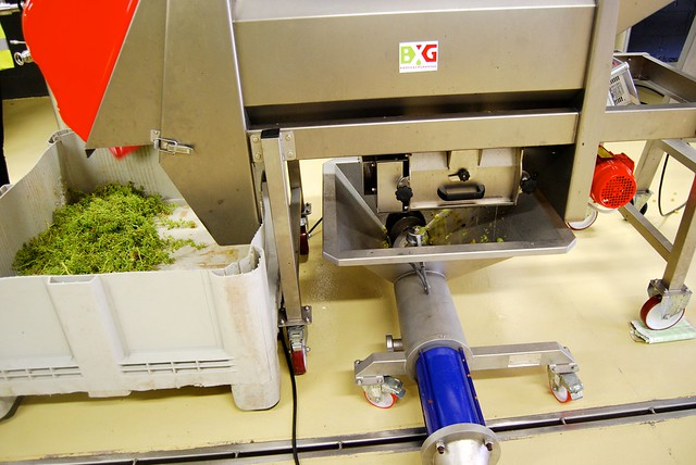 Grape Processing Equipment in Campo Viejo's Microwinery