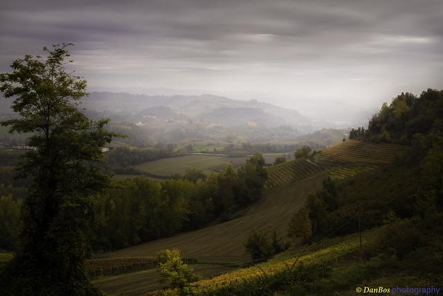 Langhe - Piedmont (Italy): Autumn evening