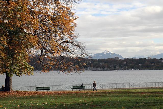 Lake Geneva and Mont Blanc