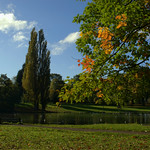 Lake at Haslam Park, Preston