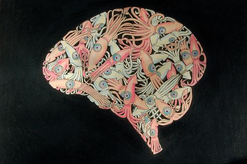 Создать нейроинтерфейс мозг-компьютер поможет кальмар