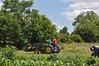 Garden work, July 2014 by tshiverd