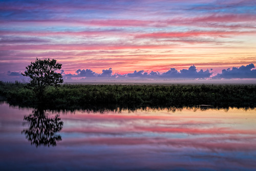 blue sky orange usa cloud reflection tree reed water weather sunrise river landscape dawn florida cloudy swamp marsh cocoa stjohnsriver centralflorida rivergrass edrosack