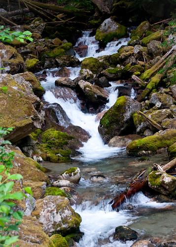 08-07-14 Cascades