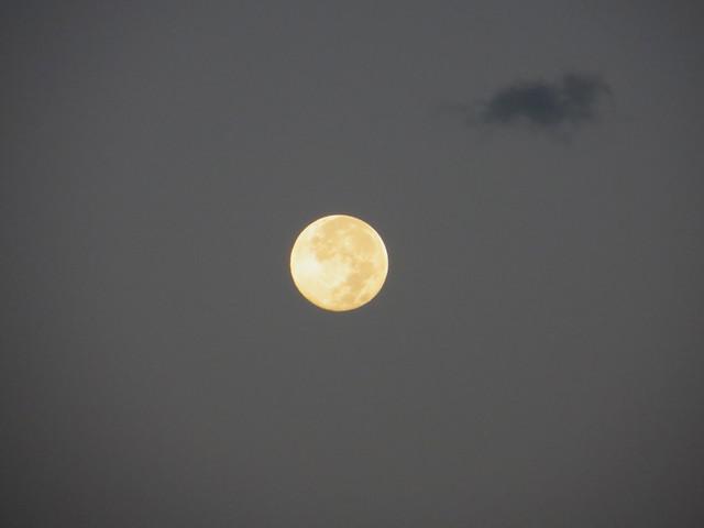 monday morning moon