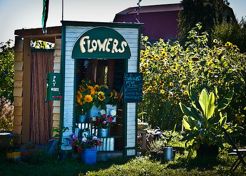 09-07-14 Sunflower Market