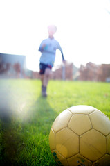 football player, ball, sport venue, grass, play, player, ball, football,