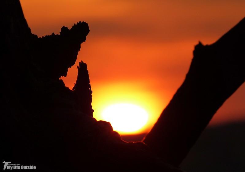 P1080879 - Sunset