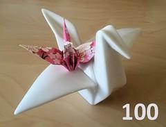 Celebrating 100 Cranes