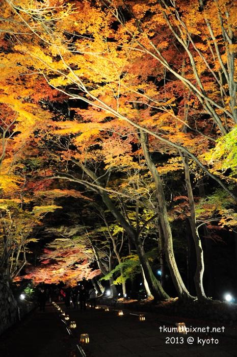 毘沙門堂夜間點燈 (2).jpg