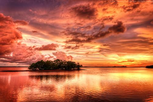 sunset sky sun water birds clouds florida dramatic lagoon swamp everglades riccardo evergladescity mantero redcolors potd:country=it
