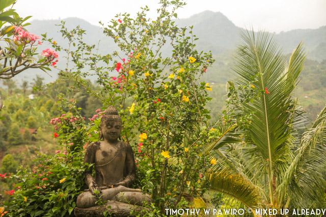 Bali - Shanti Natural Panorama View - Buddha statue