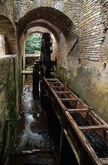 Forges de Buffon - Photo of Bierry-les-Belles-Fontaines