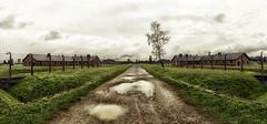 Polonia, Birkenau, Vernichtungslager