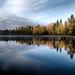 Reflections of Fall by Jarno Savinen
