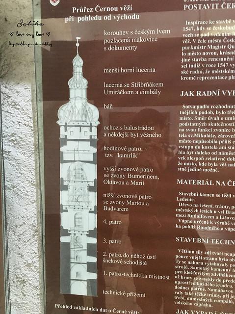 Ceske Budejovice百威小鎮巴德傑維契黑塔市鎮廣場參孫噴泉 (1)