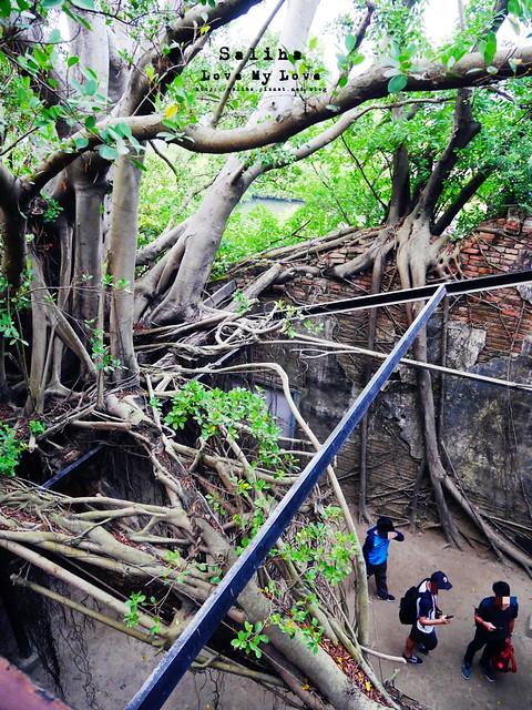 台南一日遊景點推薦安平樹屋安平老街 (28)