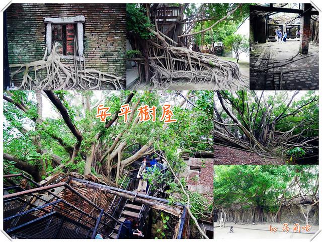 台南景點安平樹屋