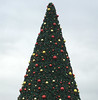 xmas tree at the mall-003