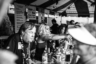 2014 Sacramento Music Festival