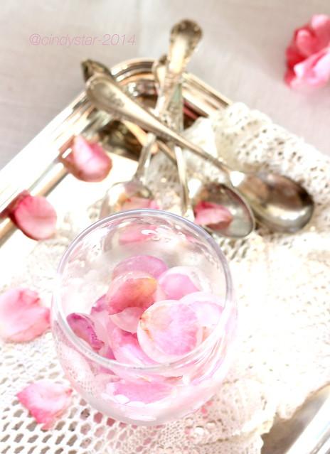 petali di rosa ghiacciati