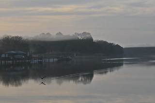 Honorable Mention - 'Foggy Morning' – Vern Williams
