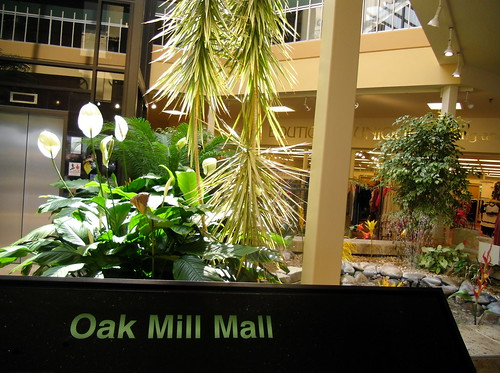 Oak Mill Fountain