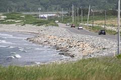 Rebuilt road at Sachuest Point. Credit: Tom Sturm/USFWS