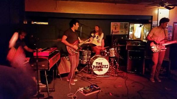 The Donkeys at the Beachland Tavern, Cleveland. 18-Jul-14.