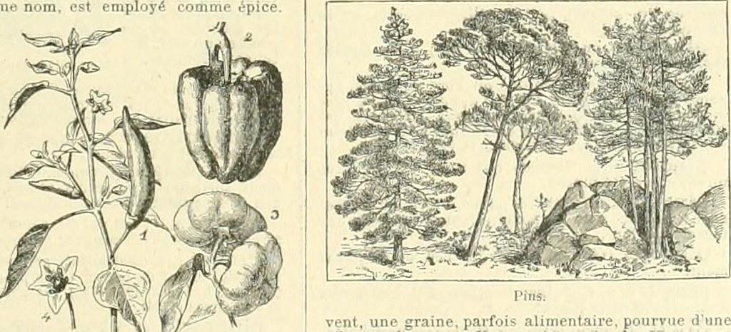 Plan Q Avec Une Milf Coquine Sur Auxerre