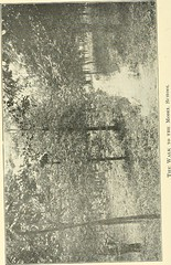 """Image from page 69 of """"Thirteenth Annual Catalogue of the East Carolina Teachers College, 1921-1922"""" (1922)"""