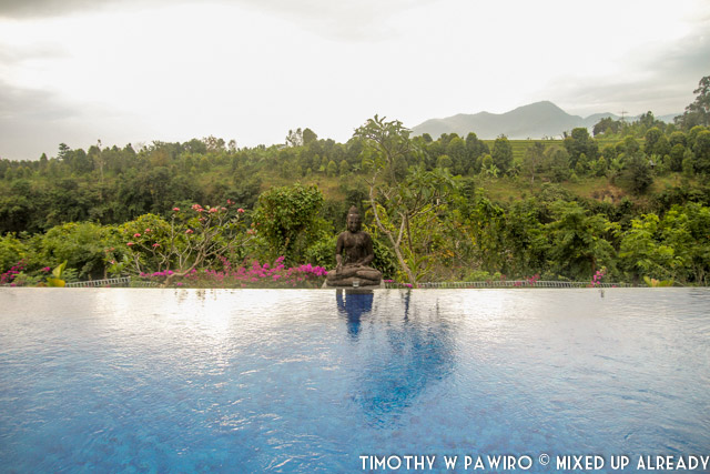 Bali - Shanti Natural Panorama View - The swimming pool (02)