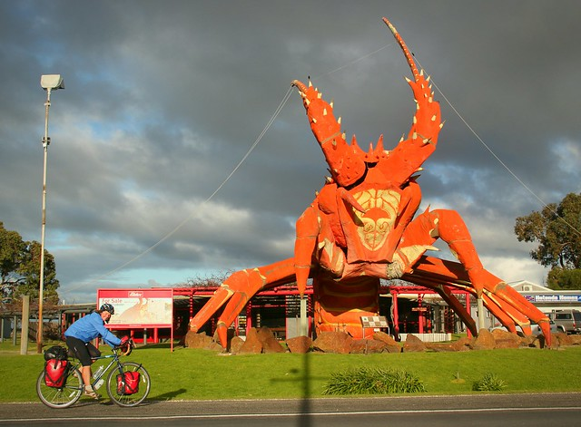 Giant lobster, Kingston