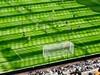 Newcastle v Palace (Aug 2014)