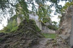 Ferrette.Les ruines du château de Ferrette.7