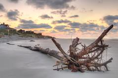 Retire in Hilton Head