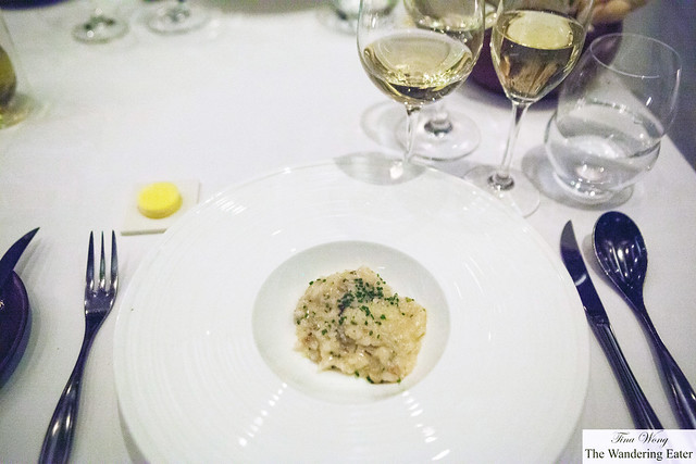 Truffle and mushroom risotto, chive oil