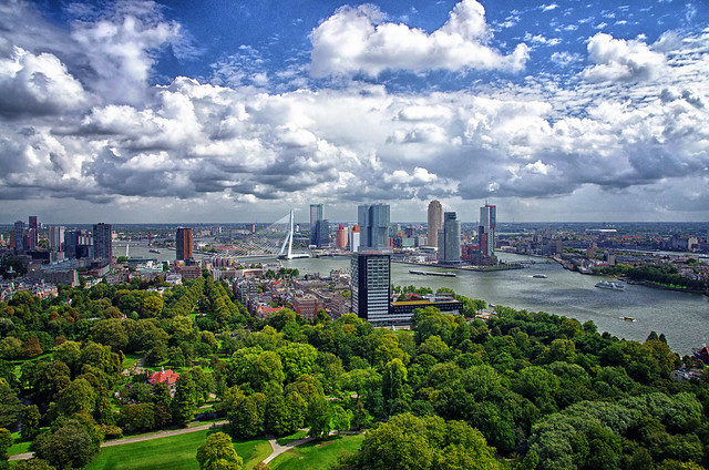 Summer in Rotterdam.
