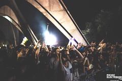 PIKNIC ÉLECTRONIK 2014 - 7 septembre ©Elise Apap