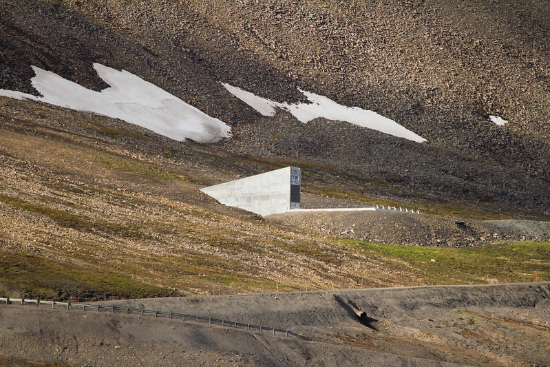 RelaxedPace00900_Svalbard7D4779